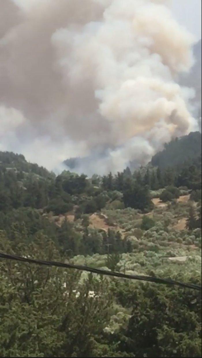 Ανεξέλεγκτη  φωτιά στα Χανιά, πνέουν δυνατοί άνεμοι ΕΙΚΟΝΕΣ - εικόνα 4