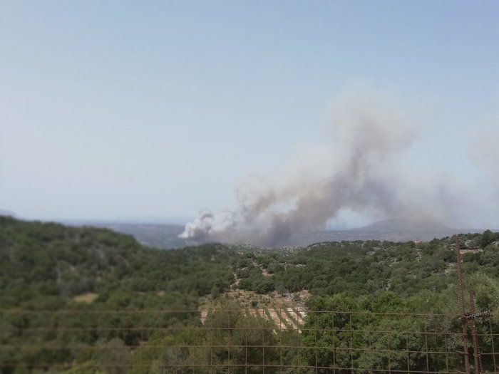 Ανεξέλεγκτη  φωτιά στα Χανιά, πνέουν δυνατοί άνεμοι ΕΙΚΟΝΕΣ - εικόνα 5