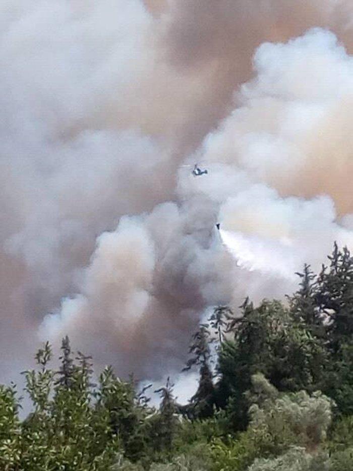 Χανιά: Σε εξέλιξη η μεγάλη πυρκαγιά στον Αποκόρωνα - Βίντεο - Εικόνες - εικόνα 3
