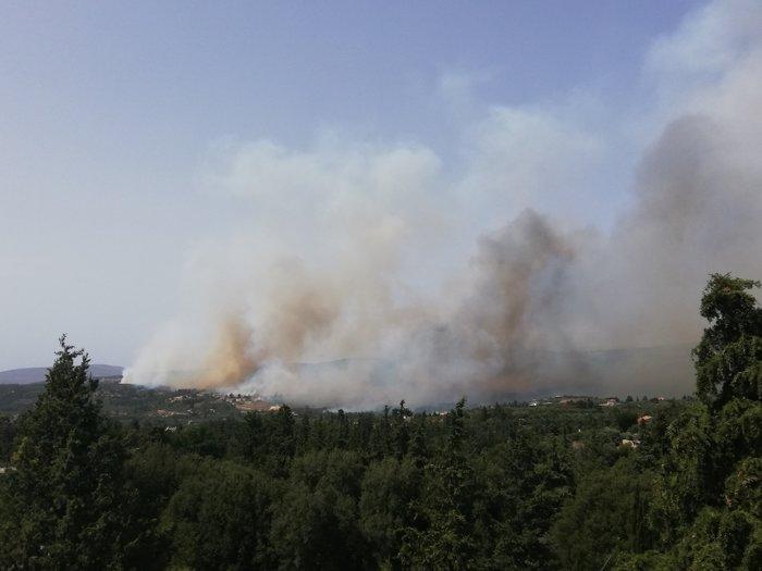 Χανιά: Σε εξέλιξη η μεγάλη πυρκαγιά στον Αποκόρωνα - Βίντεο - Εικόνες - εικόνα 2