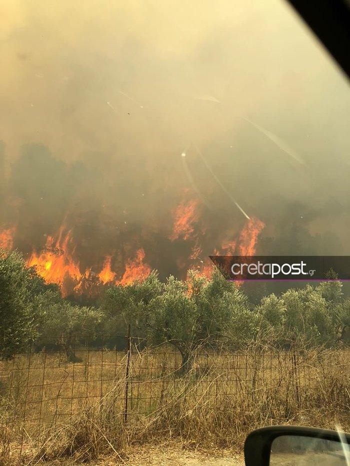 Χανιά: Σε εξέλιξη η μεγάλη πυρκαγιά στον Αποκόρωνα - Βίντεο - Εικόνες - εικόνα 4