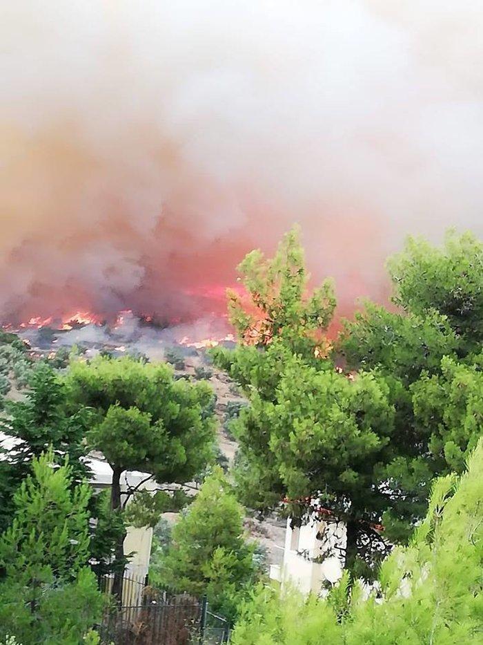Μεγάλη πυρκαγιά μαίνεται μεταξύ Πεντέλης και Νέου Βουτζά: Κάηκαν σπίτια