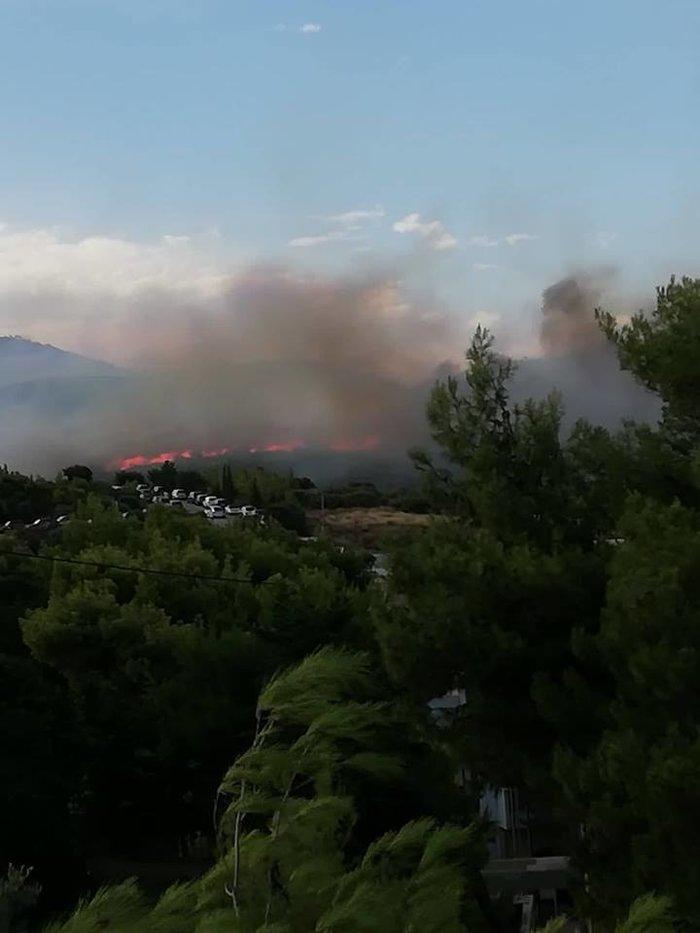 Μεγάλη πυρκαγιά μαίνεται μεταξύ Πεντέλης και Νέου Βουτζά: Κάηκαν σπίτια - εικόνα 2