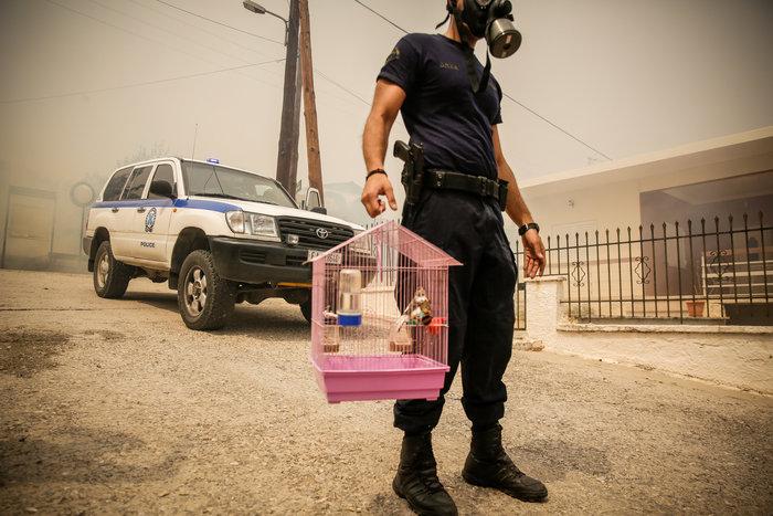 Πυρκαγιά στην Κινέτα: Η ανθρωπιά σε 3 συγκλονιστικές εικόνες