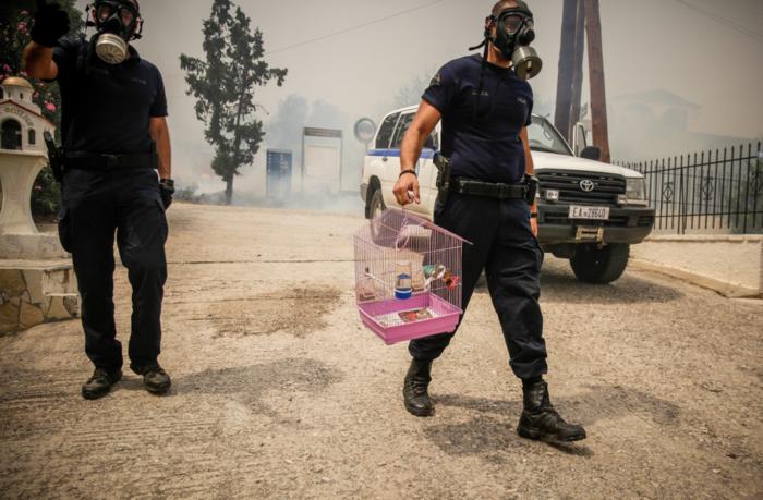 Πυρκαγιά στην Κινέτα: Η ανθρωπιά σε 3 συγκλονιστικές εικόνες - εικόνα 3