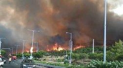 Νέος Βουτζάς: Στη Λεωφόρο Μαραθώνος οι φλόγες-Βίντεο