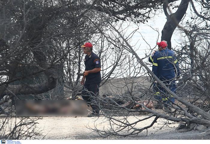 Ανείπωτη τραγωδία: Αγκαλιασμένοι κάηκαν ζωντανοί στην παραλία στο Μάτι - εικόνα 5