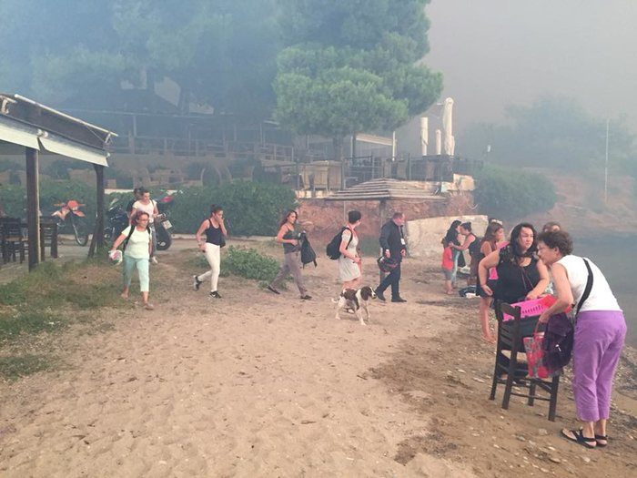Σκηνές αποκάλυψης στις παραλίες της Ραφήνας με τη φωτιά - εικόνα 11