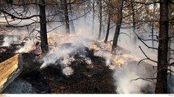 Αλεξανδρούπολη: Σε εξέλιξη η φωτιά και στο Σουφλί