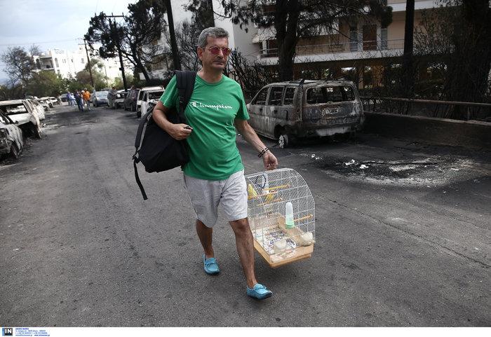 Μάτι και Κόκκινο Λιμανάκι: Συγκλονιστικές μαρτυρίες κατοίκων - εικόνα 17