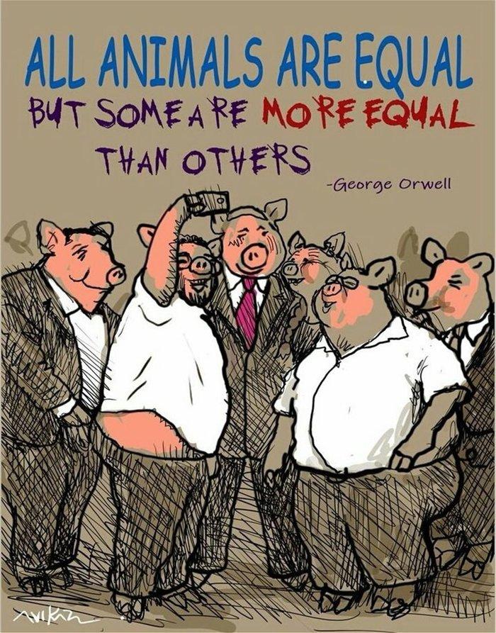 Ισραήλ: Απολύθηκε γελοιογράφος που σχεδίασε τον Νετανιάχου ως γουρούνι