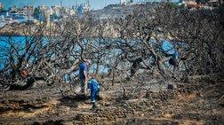 Ολοκληρώθηκαν οι νεκροψίες - 87 οι νεκροί από τις πυρκαγιές
