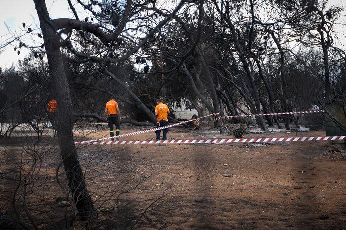 Μια ανείπωτη τραγωδία σε εξέλιξη:Ταυτοποιήσεις, έρευνες & η φωτιά στα χόρτα - εικόνα 2