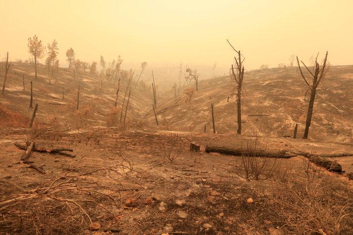 Μεγάλες φωτιές στην Καλιφόρνια: Πέντε νεκροί και 17 αγνοούμενοι - εικόνα 6