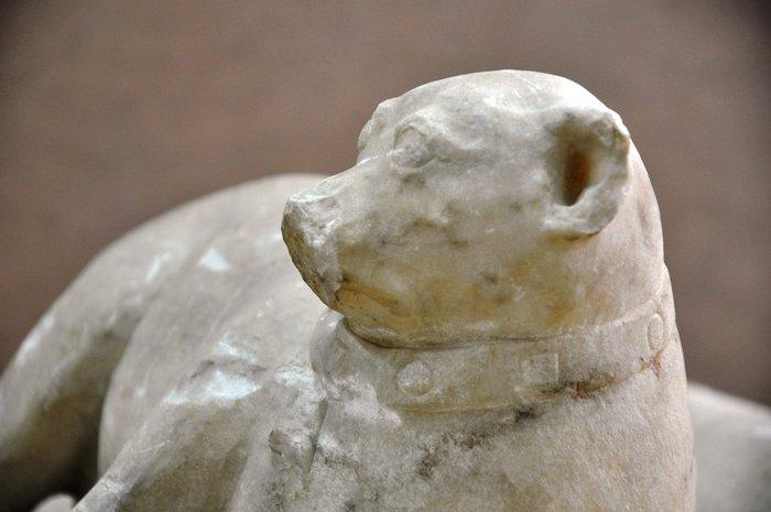 Ένας «εξηπλωμένος μικρός κύων» στο Αθέατο Μουσείο - εικόνα 2