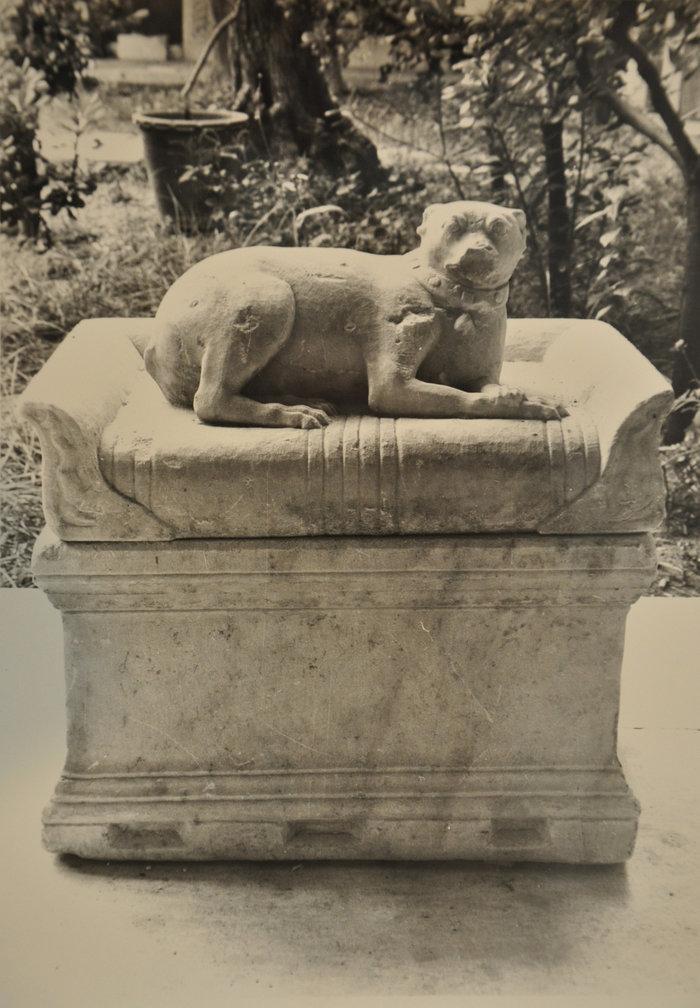 Ένας «εξηπλωμένος μικρός κύων» στο Αθέατο Μουσείο - εικόνα 3
