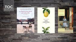 toc-books-nikola-mparro-eirini-giannaki-kai-thiontor-ntraizer