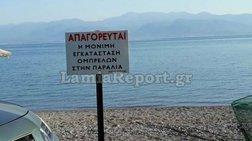 fthiwtida-ksilwnoun-ompreles-kai-ksaplwstres-apo-tis-paralies-fwto