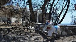 132 εκ. για την αποκατάσταση κτιρίων στις πυρόπληκτες περιοχές