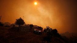 Σε ύφεση οι φωτιές στην Πορτογαλία, 8 νεκροί στην Καλιφόρνια