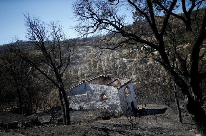 Σε ύφεση οι φωτιές στην Πορτογαλία, 8 νεκροί στην Καλιφόρνια - εικόνα 3