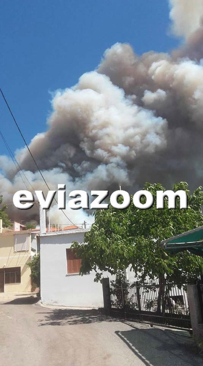 Ολονύχτια μάχη με τη φωτιά στην Εύβοια-Εκκενώθηκαν 2 χωριά - εικόνα 4