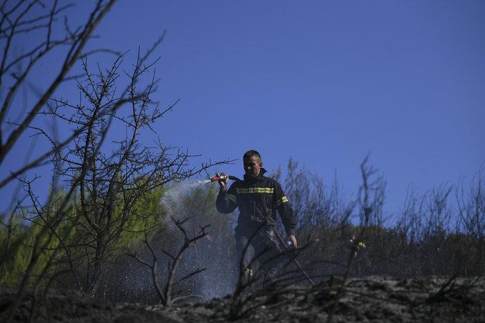 Παραμένουν στον Αγιο Στέφανο οι δυνάμεις της Πυροσβεστικής - Εικόνες - εικόνα 6