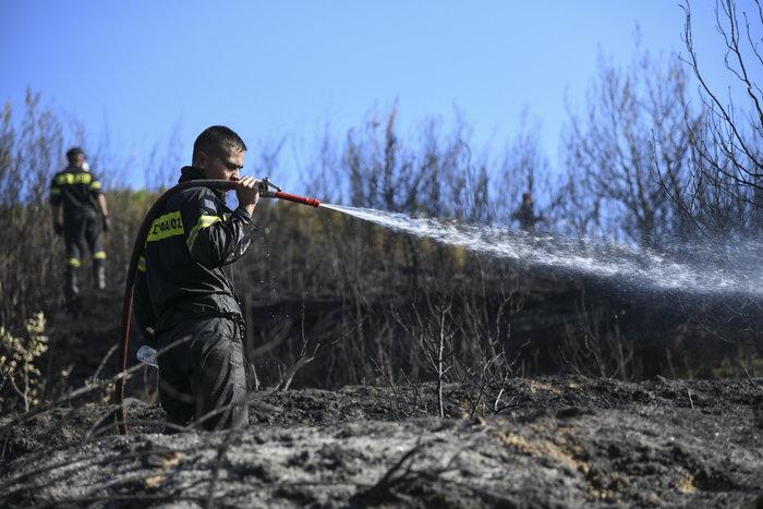 Παραμένουν στον Αγιο Στέφανο οι δυνάμεις της Πυροσβεστικής - Εικόνες - εικόνα 5