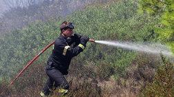Υπό έλεγχο φωτιά που ξέσπασε στην Κασσάνδρα Χαλκιδικής