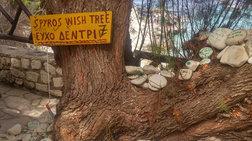 Μαγεύει τους τουρίστες το «δέντρο των ευχών» στους Αντίπαξους