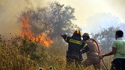 Πάτρα: Σε εξέλιξη πυρκαγιά στο Άνω Καστρίτσι