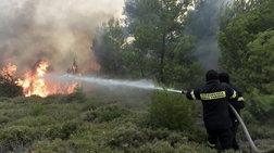 Πολύ υψηλός ο κίνδυνος πυρκαγιάς για την Πέμπτη