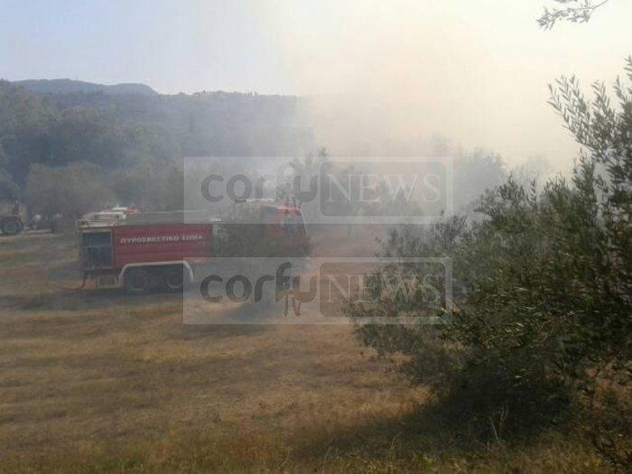 Σε ύφεση η φωτιά στους Ραχτάδες Κέρκυρας - Επέστρεψαν οι κάτοικοι - εικόνα 6
