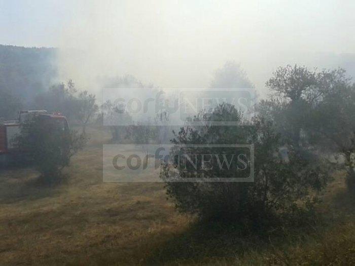 Σε ύφεση η φωτιά στους Ραχτάδες Κέρκυρας - Επέστρεψαν οι κάτοικοι - εικόνα 4