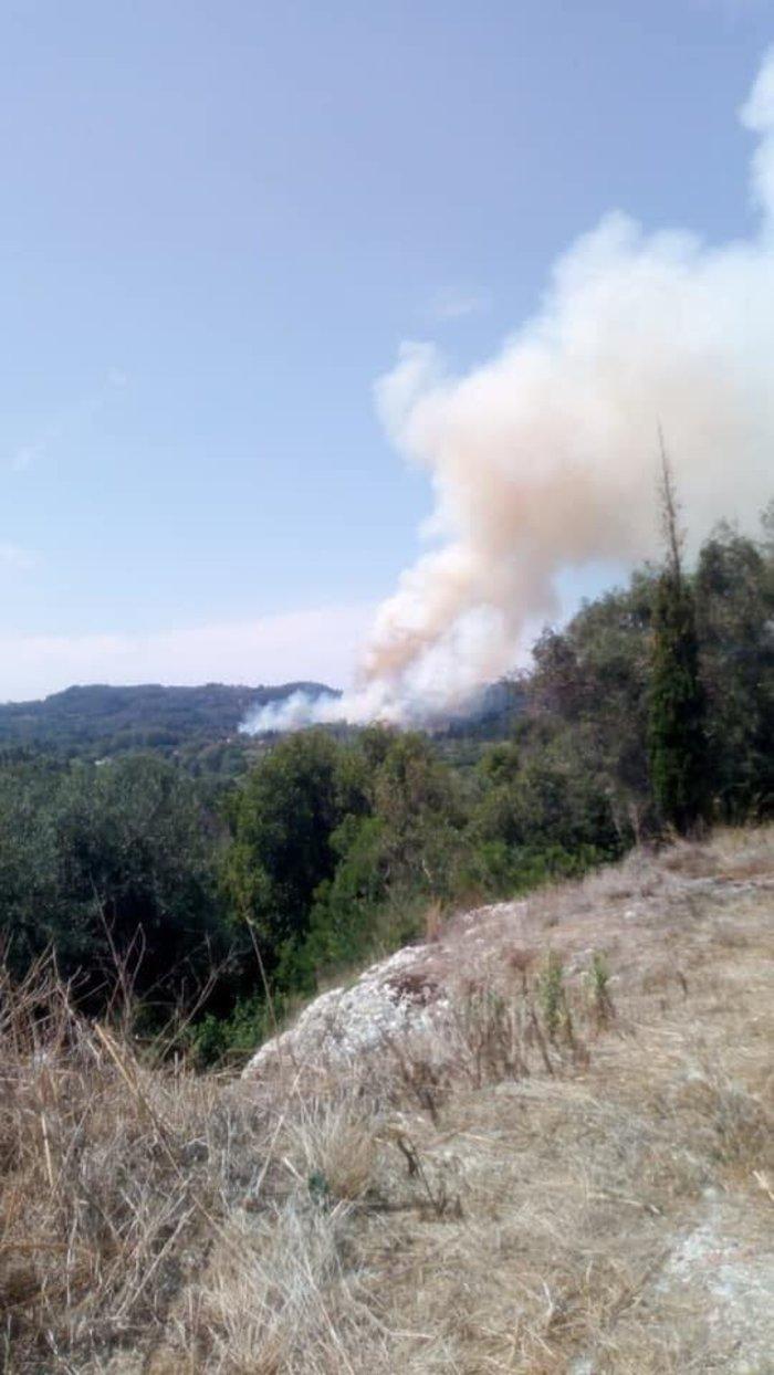 Σε ύφεση η φωτιά στους Ραχτάδες Κέρκυρας - Επέστρεψαν οι κάτοικοι - εικόνα 2