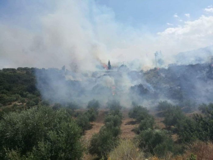 Xανιά: Μεγάλη φωτιά στον Αποκόρωνα κοντά σε σπίτια Εικόνες - Βίντεο - εικόνα 5