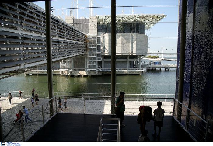 Λισαβόνα: «Boυτιά» στο δεύτερο μεγαλύτερο ενυδρείο στον κόσμο