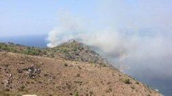 Σε εξέλιξη μεγάλη πυρκαγιά στις Αμάδες Χίου