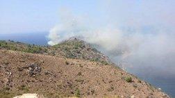 Σε ύφεση η πυρκαγιά στις Αμάδες Χίου