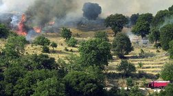 Σε εξέλιξη δασική πυρκαγιά στην ανατολική Μάνη