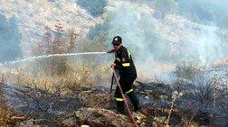 Φωτιά σε αναγεννημένη δασική έκταση στην περιοχή Ρεβελέικα της Ηλείας