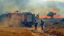 Σε εξέλιξη πυρκαγιά σε βαλτώδη έκταση στην Ηλεία