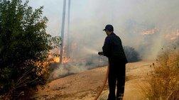 Φωτιά ανάμεσα στην περιοχές Κοτύχι και Αρετή στην Ηλεία