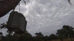 Ακουστικοί αισθητήρες τοποθετούνται σε δάσος στη Ροδόπη