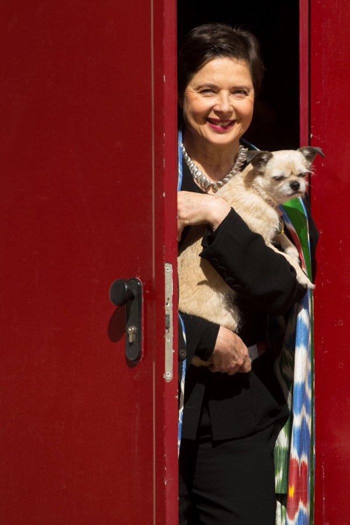 Ιζαμπέλα Ροσελίνι: Πάνω από όλα η αγάπη για τα ζώα