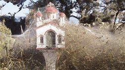 Απίστευτες φωτογραφίες: Iστοί αράχνης «κατάπιαν» την Βιστωνίδα