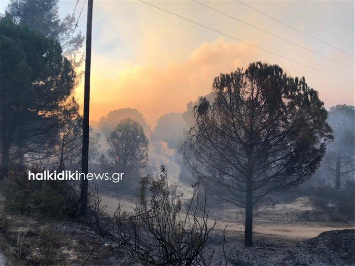 Ανεξέλεγκτη η μεγάλη φωτιά στη Σιθωνία Χαλκιδικής [φωτό - βίντεο]