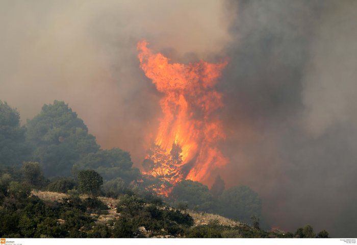 Φωτιά Σιθωνία: Καλύτερη η κατάσταση στην Σάρτη
