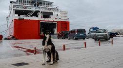 ΟΜΥΛΕ: Aποχή διαρκείας τα Σαββατοκύριακα στα 10 περιφερειακά λιμάνια