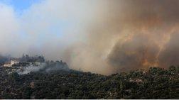 Χαλκιδική: Οριοθετήθηκε η φωτιά στη Σάρτη